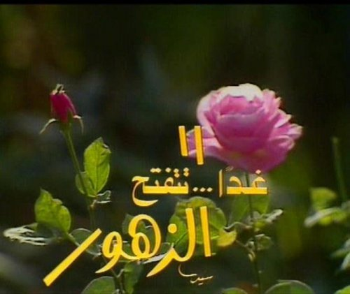Ghadaa Tatfath El-Zohoor غدا تتفتح الزهور